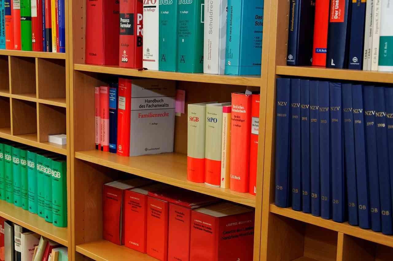 summary cases book