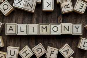 Alimony spelled out using wooden building blocks